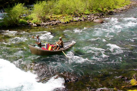 Oregon Fly Fishing Guides | Fly Fishing McKenzie River | Holloway Bros