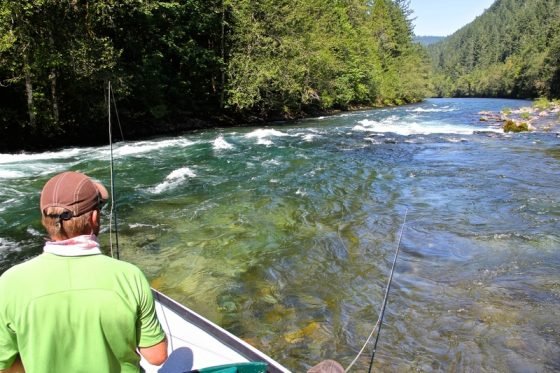 Fly Fishing for Trout with the Holloway Bros, located in Eugene Oregon