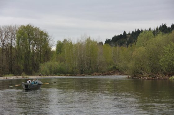 Fly Fishing Guides in Oregon know where the action is | Holloway Bros