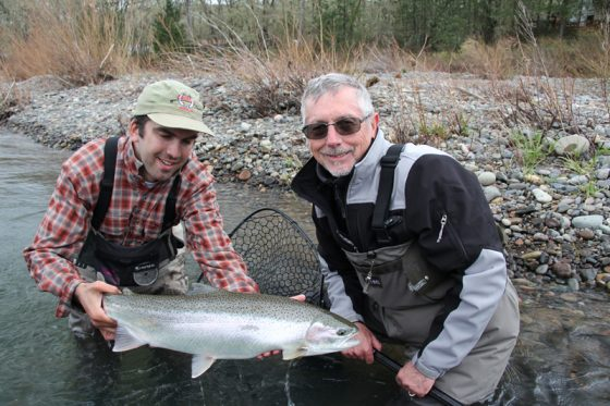 Freshly Caught Winter Steelhead from Fly Fishing with Holloway Bros Fishing Guides in Oregon